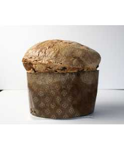 Panditoni Chocolate Panettone and glazed almond Crust